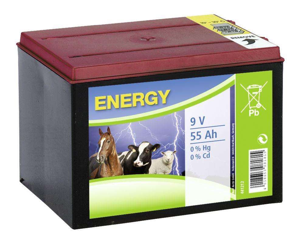 Spezial- Trockenbatterie 55AH
