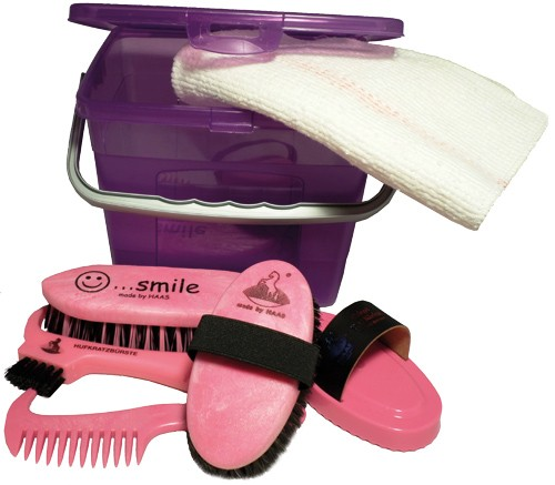 Haas Kinder- Putzbox lila/rosa