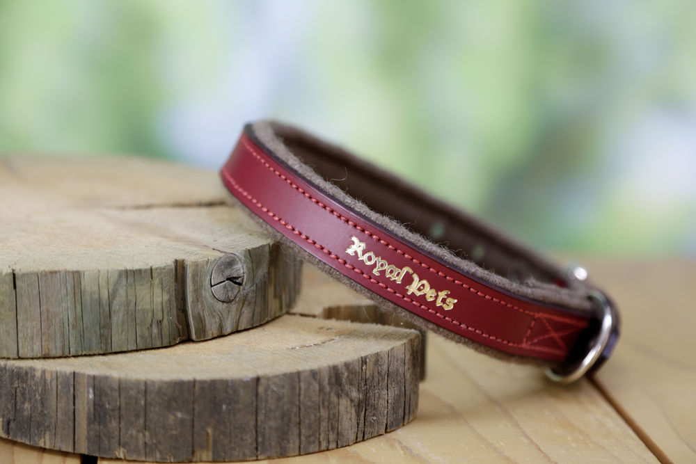 Halsband Royal Pets 38-46cm