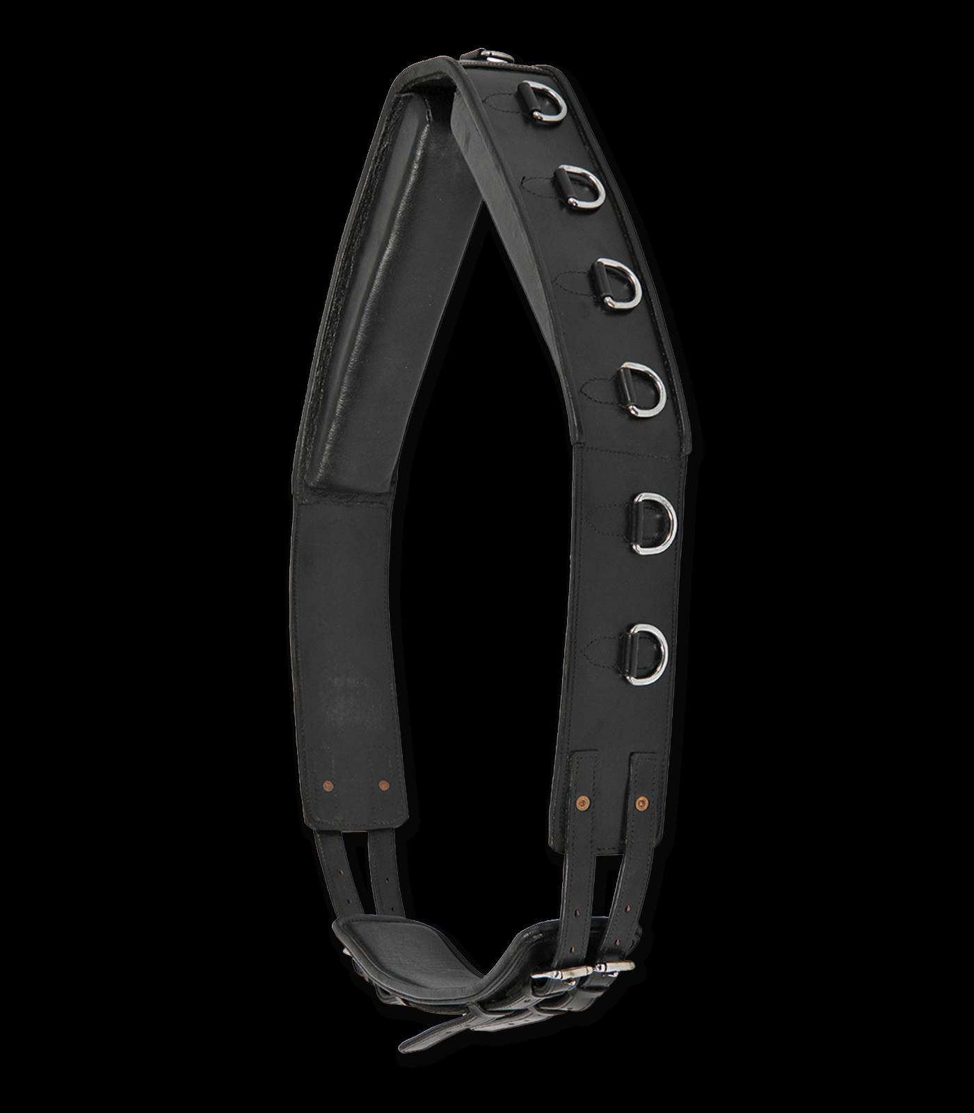 Longiergurt  Leder 13 Ringe